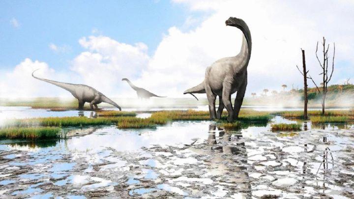 В Испании нашли новый вид динозавров – и назвали в честь Андреса Иньесты