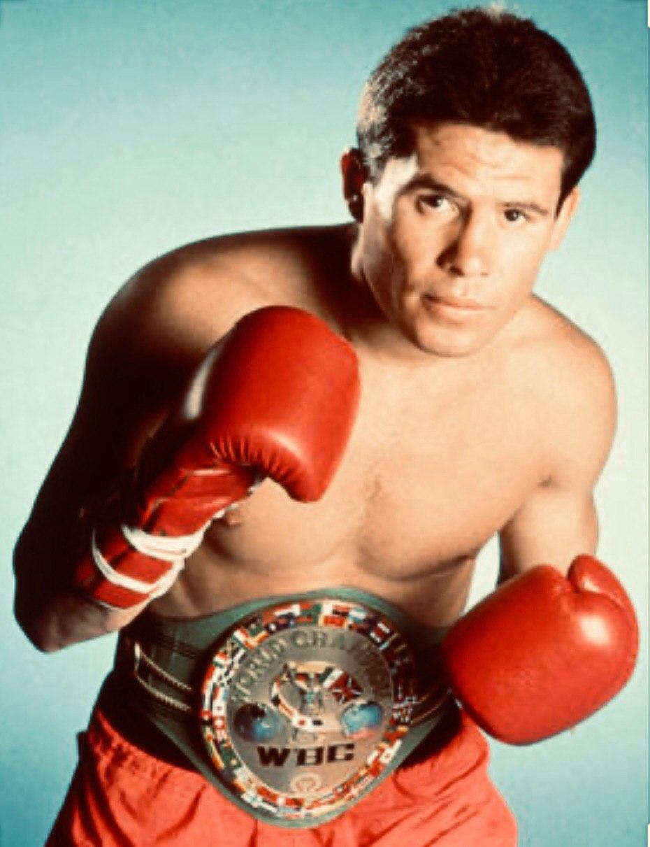 Хулио Сезар Чавес, бокс, Международный зал боксерской славы