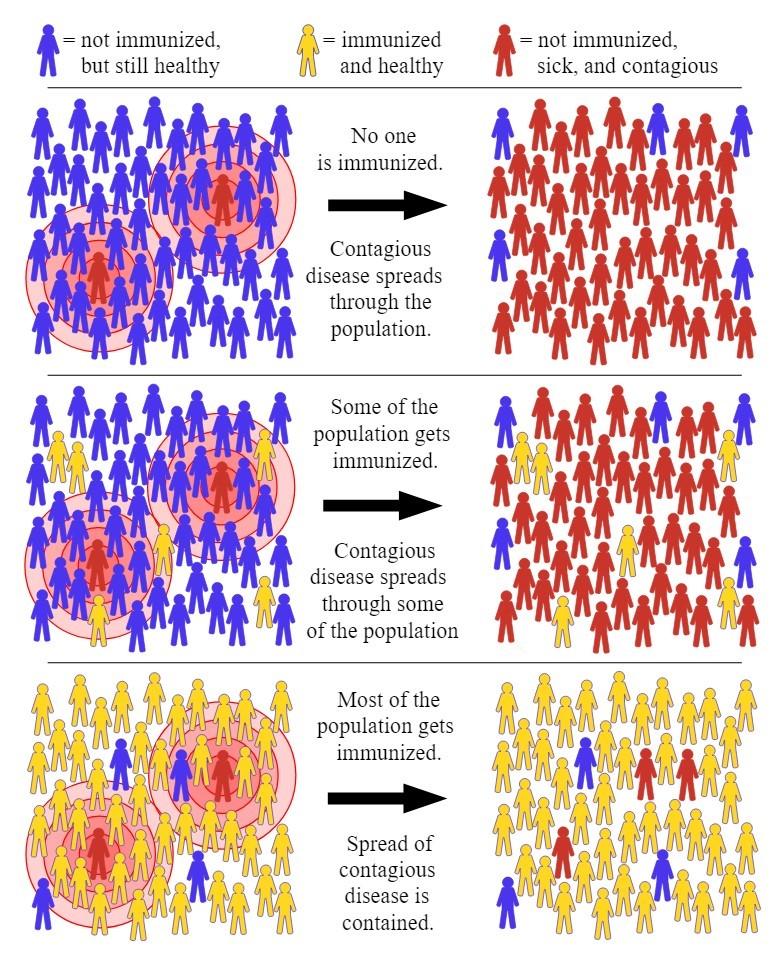 Важное о вакцине в футболе: есть ли смысл, точно ли она безопасна, что о ней думают в РПЛ?